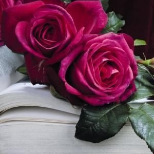 Роза Гете